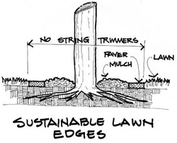 Drawing by John Markowski illustrating how to create more sustainable mowing edges.