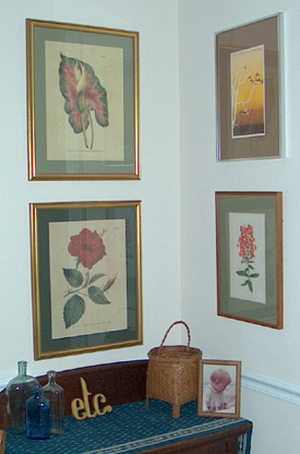 Botanical Prints of Caladium and Hybiscus on the left.  A lithograph of a bare tree and a water color of Phlox.