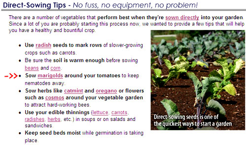 From Park Seeds email.  They promote an old gardeners' tale instead of the science.