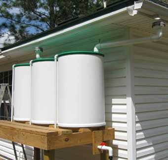 3 new rain barrels near the vegetable garden..  Photo by Stibolt