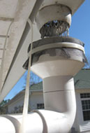 "The 4"" to 2"" adapter covered with a scrren works to catch the rainwater from the gutter. Photo by Stibolt."