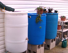 Rain barrels: savings for a sunny day.  Photo by Stibolt.